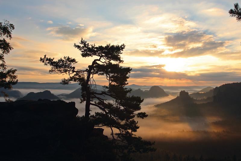 Sonnenaufgang im Elbsandsteingebirge